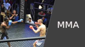 Vignette Discipline : MMA