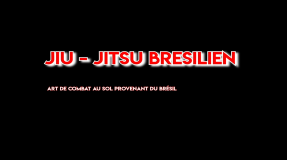 Présentation Shinbudo Jiu-Jitsu
