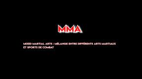 Présentation Shinbudo MMA