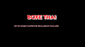 Présentation Shinbudo Muay-Thaï