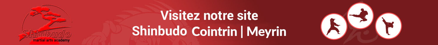 Bannière Shinbudo Cointrin